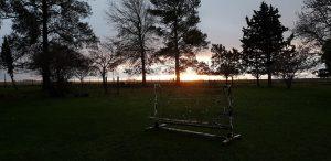 Imagen del sol cayendo detrás de varios árboles; al frente, un sillón hamaca blanca sobre césped verde