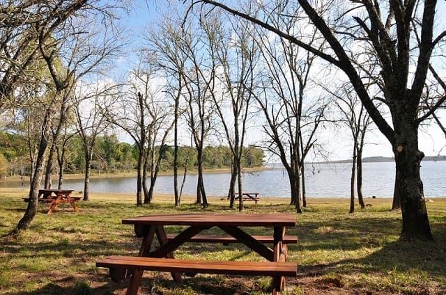 Imagen de una mesa con bancos largos de madera, a la sombra de varios árboles, en un parque; al fondo se observa parte del lago de Palmar