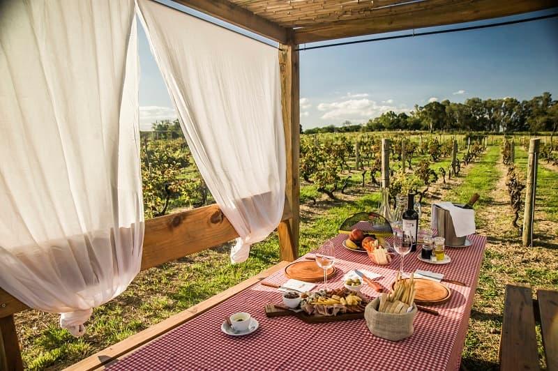 Una mesa con platos, copas y una botella de vino, frente a un viñedo en una bodega de Carmelo